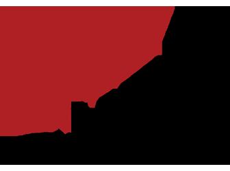Indie Bestseller logo