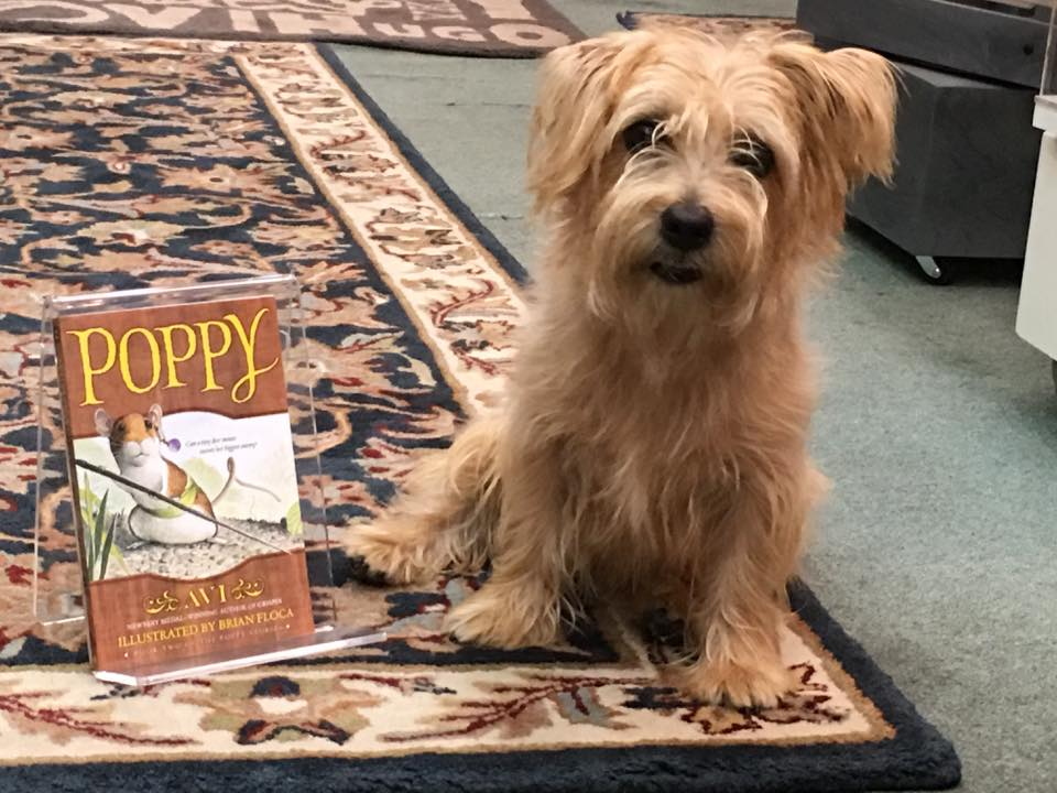 Poppy at Forever Books