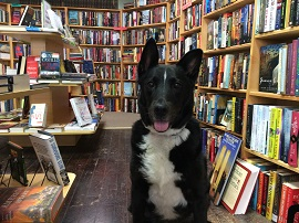Riley of Dog Eared Book in Palmyra, New York.