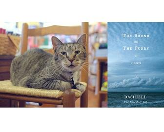 Dashiell the Bookstore Cat